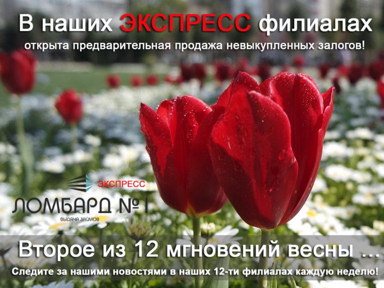 12_mgnovenij_vesni_2_12