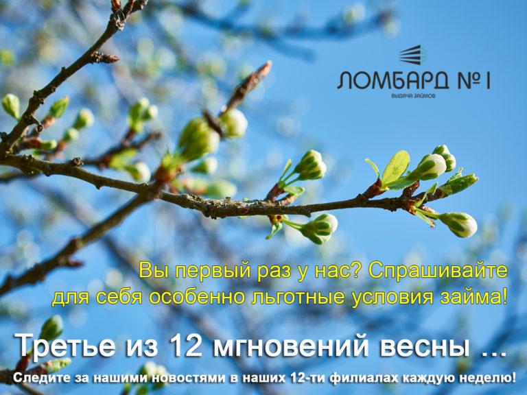 12_mgnovenij_vesni_3_12